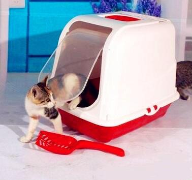 ארגז חול סגור לחתולים עם כף לניקוי
