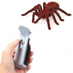 עכביש טרנטולה על שלט רחוק