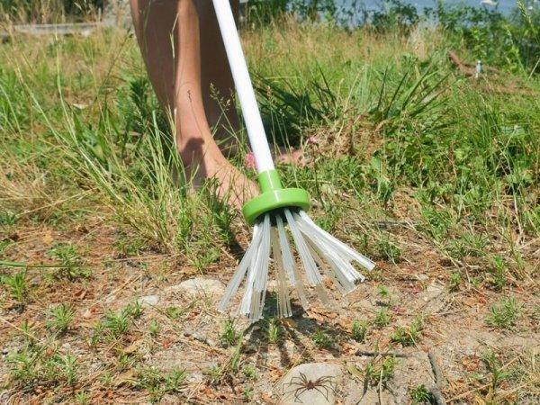 לוכד חרקים מבלי לפגוע בהם על מנת לשחרר בטבע