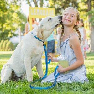 רתמה משולבת רצועה נוחה לכלב